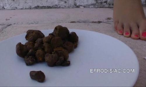 Faylana4 2014 Scat Collection Efrodisiac Edsc
